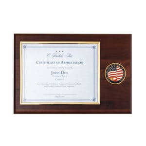 Certificate Holder Gold Frame with USA Medallion