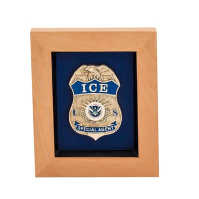 DHS ICE Special Agent Framed Award